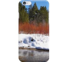 Brilliant Willow iPhone Case/Skin