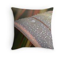 Dew on Flax Leaf, Mannum South Australia Throw Pillow