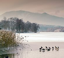 Winter Afternoon on Lake Rieg by Kasia-D