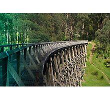 Trestle Bridge Photographic Print