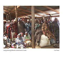 Spring Gathering of Basotho Livestock Owners, Lesotho by Lillian Trettin