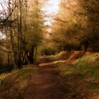 The  Pathway to the Coppice .  by Irene  Burdell