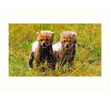 The cheeta Cubs Art Print