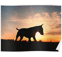 English Bull Terrier against Sunset, Oil Painting Style Print Poster