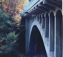 MILL CREEK BRIDGE by ROXANNE MORELLA