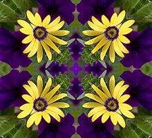 Daisy and Petunias by Kathy Weaver
