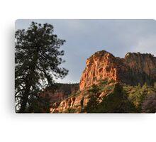 Sedona Red Rocks 3 Canvas Print