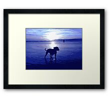 Staffordshire Bull Terrier on Beach in Blue, Pop Art Print Framed Print