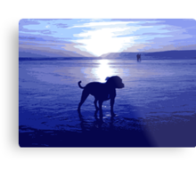 Staffordshire Bull Terrier on Beach in Blue, Pop Art Print Metal Print