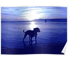Staffordshire Bull Terrier on Beach in Blue, Pop Art Print Poster