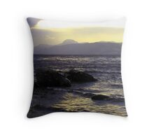 Wintry-Ness Throw Pillow