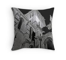 St. Johns Throw Pillow