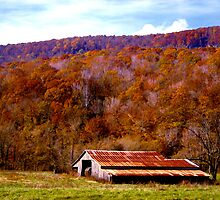 Rusty Barn in Autumn by Lisa G. Putman