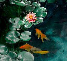 Lily Pond by Inge Kraus