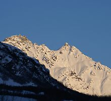 Morning on the Talkeetna Range by Jackie Muncy