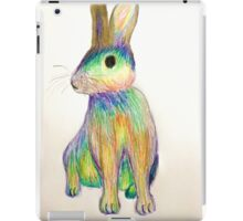 Rainbow Rabbit iPad Case/Skin
