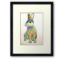 Rainbow Rabbit Framed Print