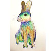 Rainbow Rabbit Photographic Print