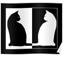 Duality - Black and White Cat Poster