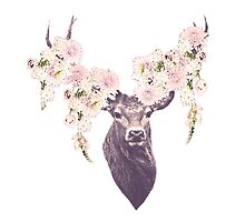 Floral Deer by Poppy Rose  Skillen
