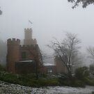 Castle in the Snow by Larry Lingard/Davis
