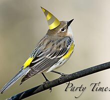 Party Time! by Bonnie T.  Barry