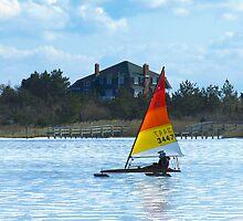 Smooth Sailing by Barbara Gerstner