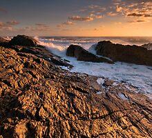 Sun-kissed Rocks by Geraldine Lefoe
