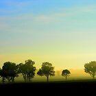 Neblina en el camino. by cieloverde