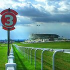 Epsom Racecourse - Home of the English Derby by Colin  Williams Photography