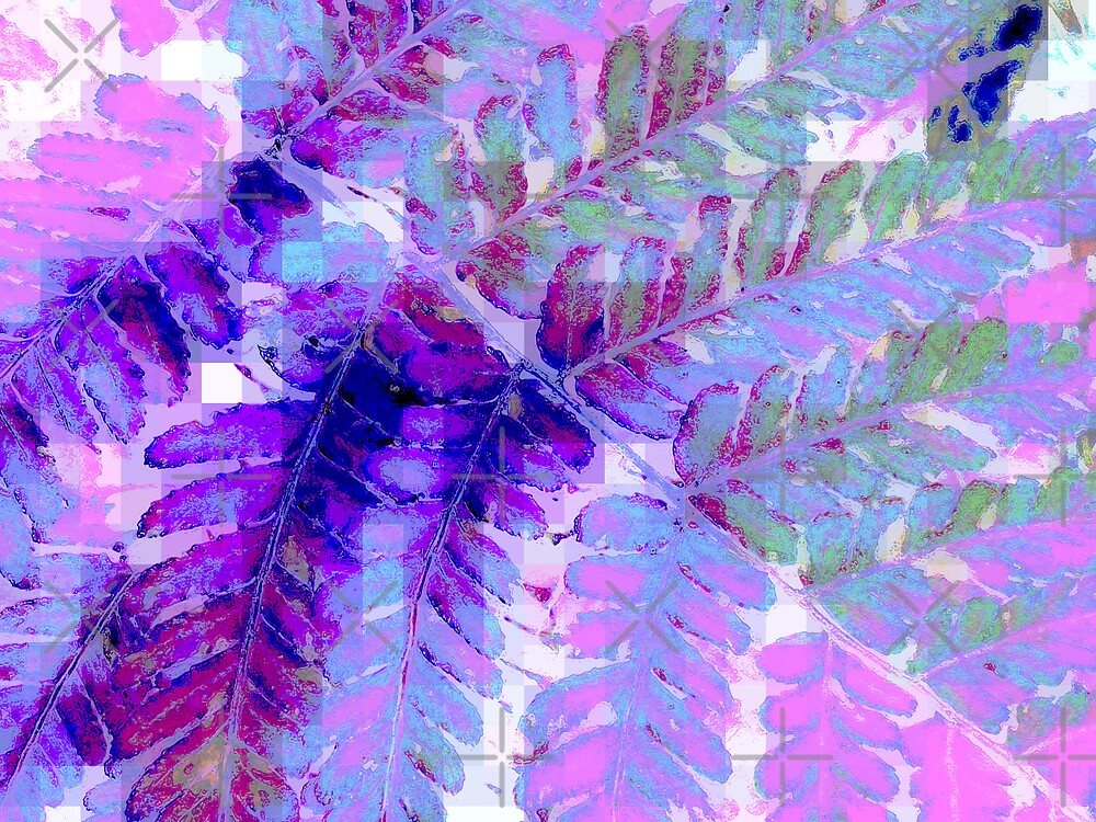 Fern in Pastel by Rebekah  McLeod