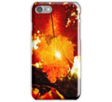 Ray of Sun Through Stunning Fall Foliage  iPhone Case/Skin