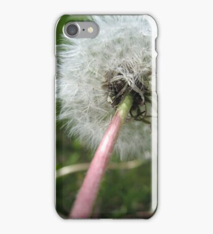 Dandy Dandelion iPhone Case/Skin