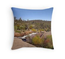 Hovea Falls Throw Pillow