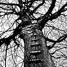 The Ladder (dark ink) by Bela-Manson