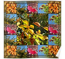Reflections of Autumn Collage Poster