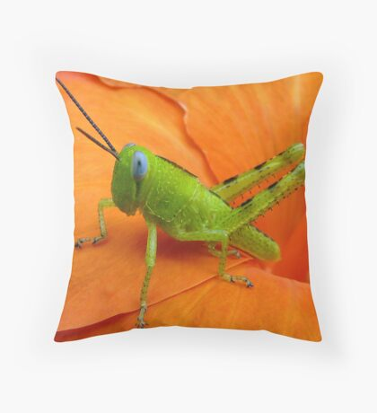 Colour Contrast Throw Pillow