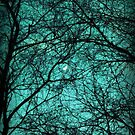 Beautiful Darkness - Half-Moon in the Trees by Bela-Manson