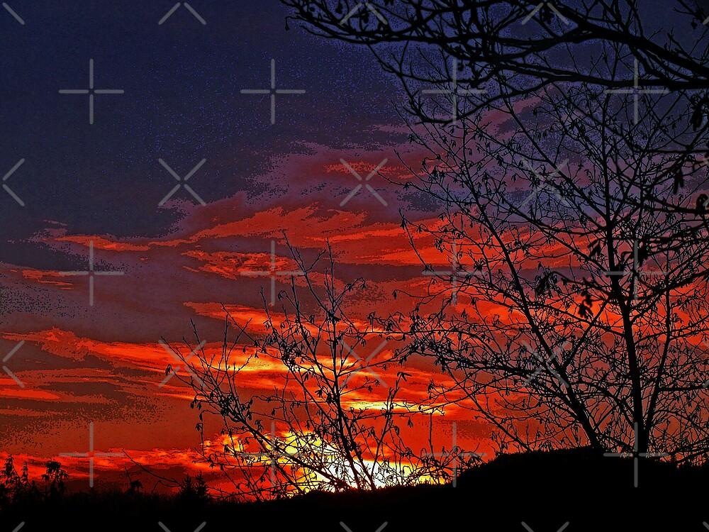 Skies On Fire by Gail Bridger