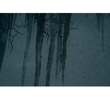 Grassy Ice at Two Stories Photographic Print