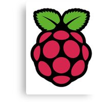 raspberry pi  Canvas Print