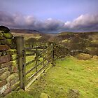 Wharfedale Gate by Andrew Leighton