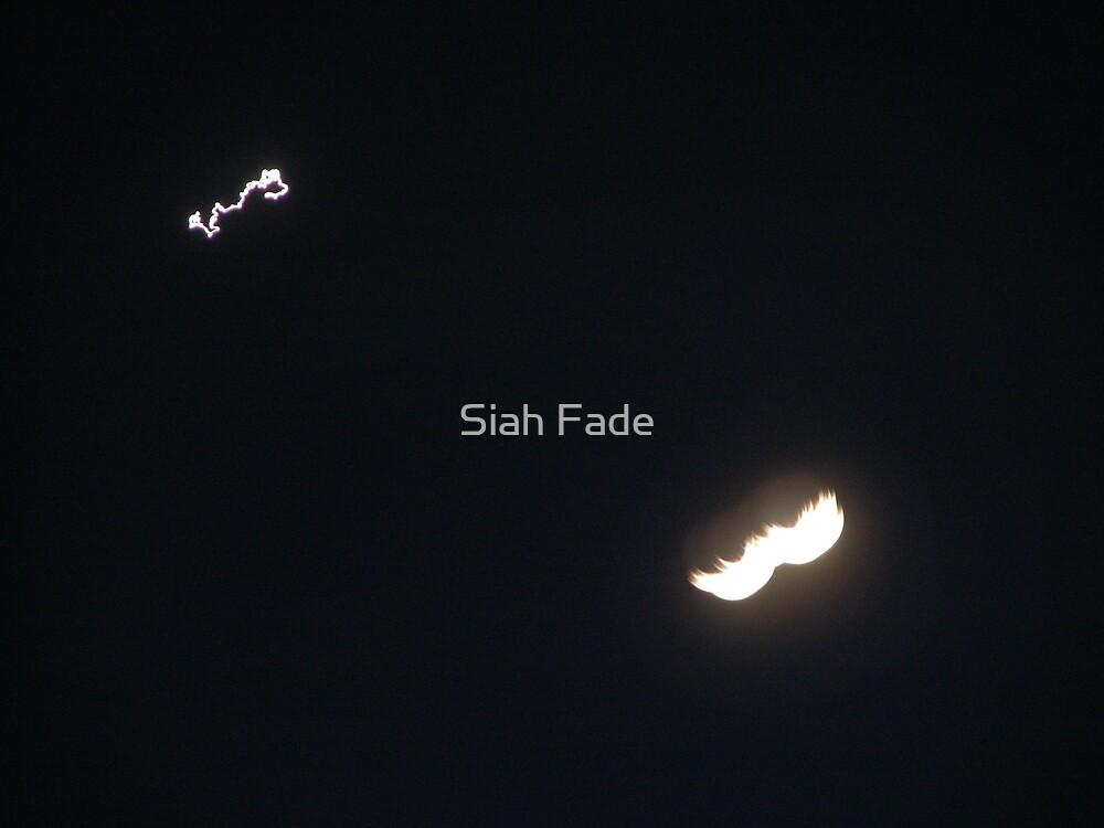 Epic Mustache by Siah Fade