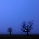 Winter skeletons by Peter Doré