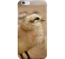 This Eyeliner is Great - Baby Chicks iPhone Case/Skin