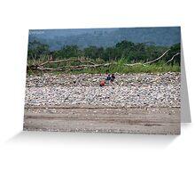 Amazon Riverbank Greeting Card