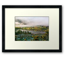 new issue Framed Print