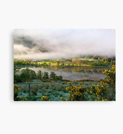 new issue Canvas Print