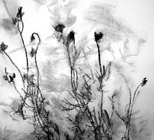 Flower shadows 1 by Aneta Bozic