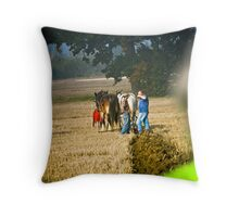 A Broader View On Things Throw Pillow